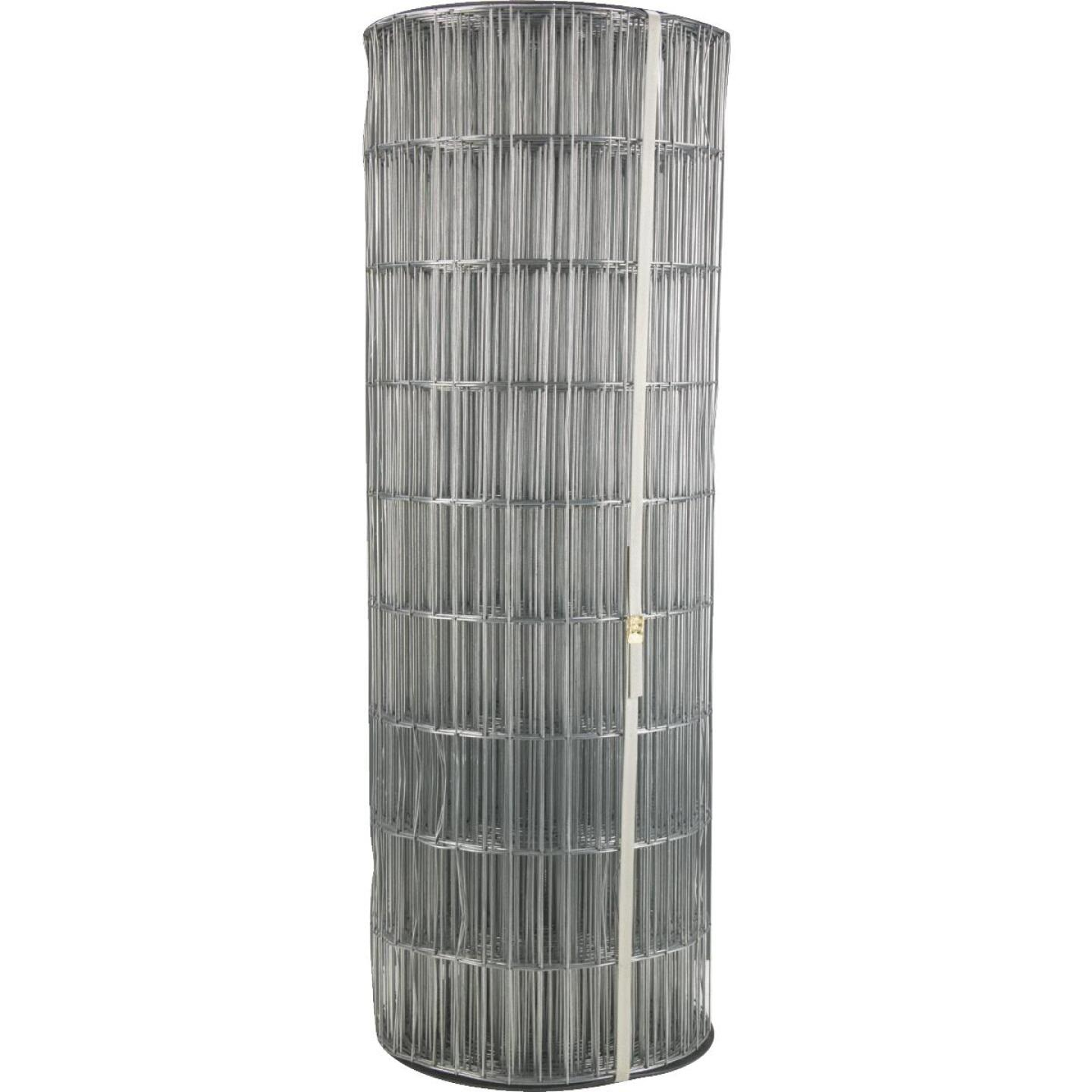 72 In. H. x 100 Ft. L. (2x4) Galvanized Welded Wire Fence Image 1